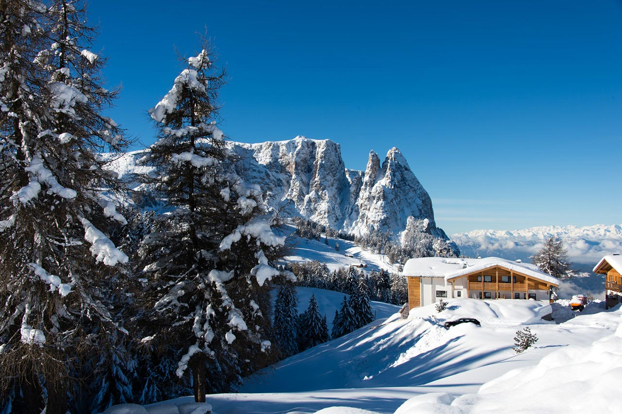 Chalet Dolomite