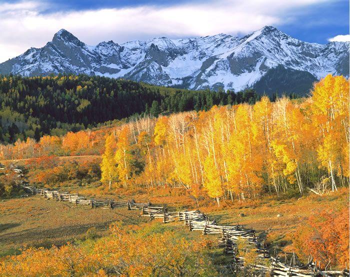Telluride fall colors
