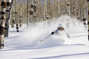 Powder Mountain Snowcat Safari Indy Pass 2021 2022